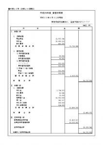 【決算】平成29年度貸借対照表 (1)のサムネイル